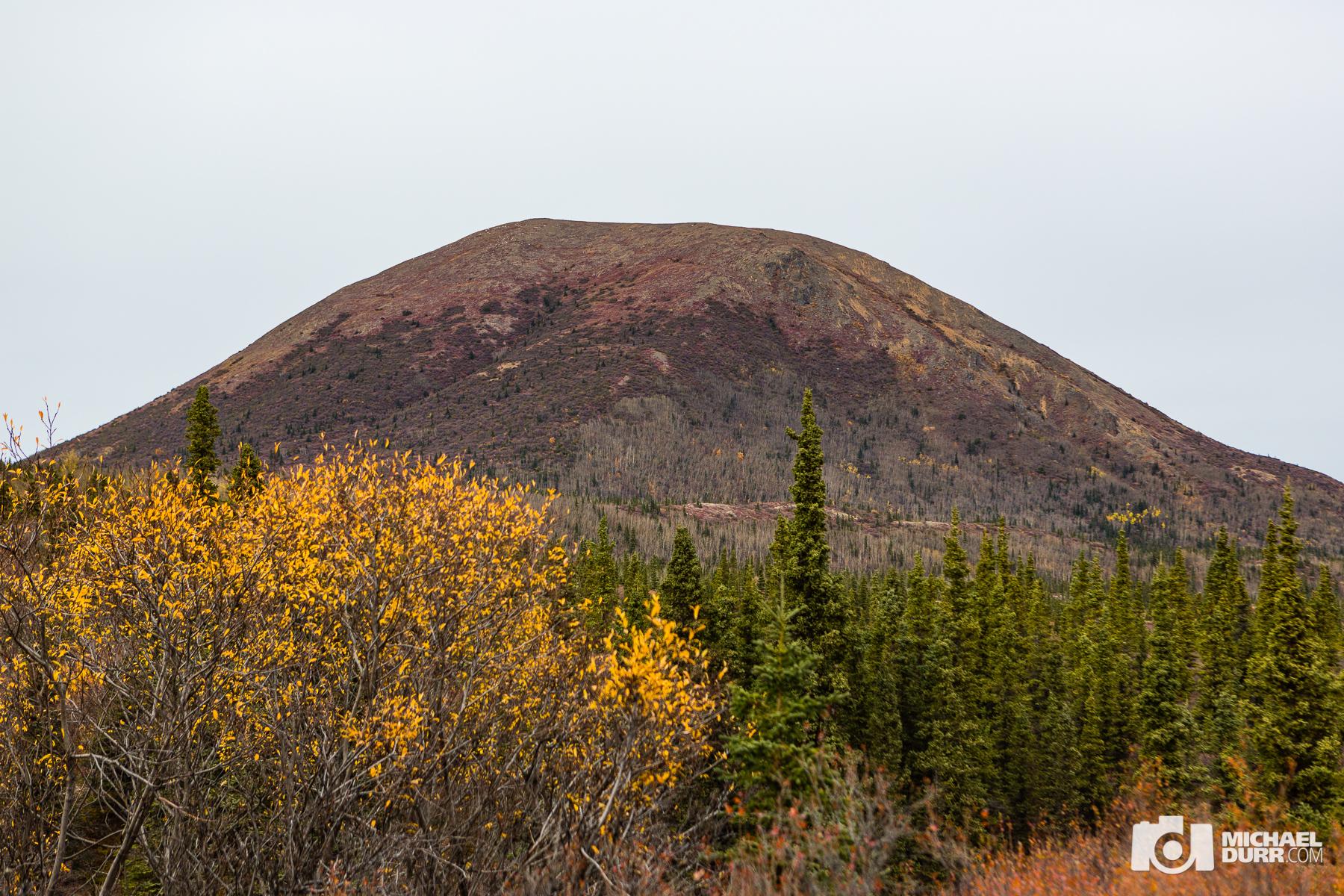Alaska_MD_0806.jpg
