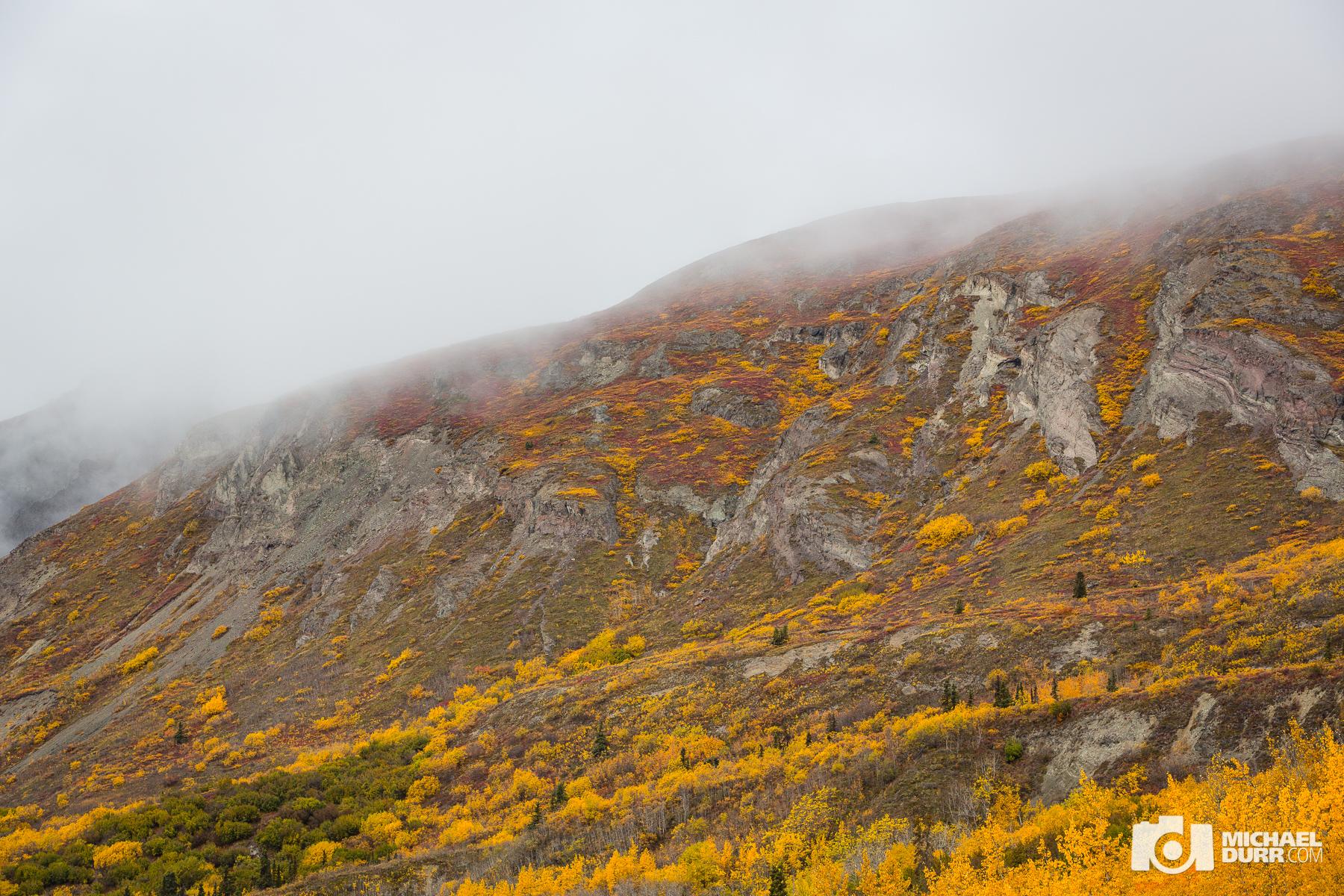 Alaska_MD_1078.jpg
