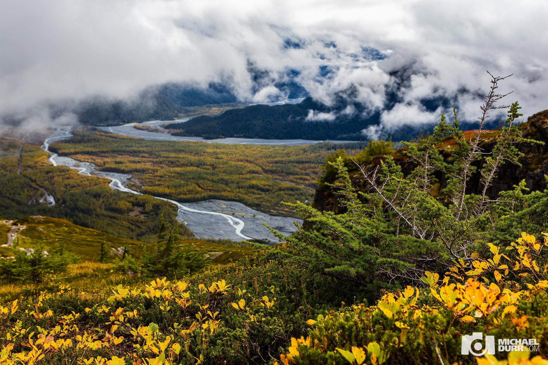 Alaska_MD_2142.jpg