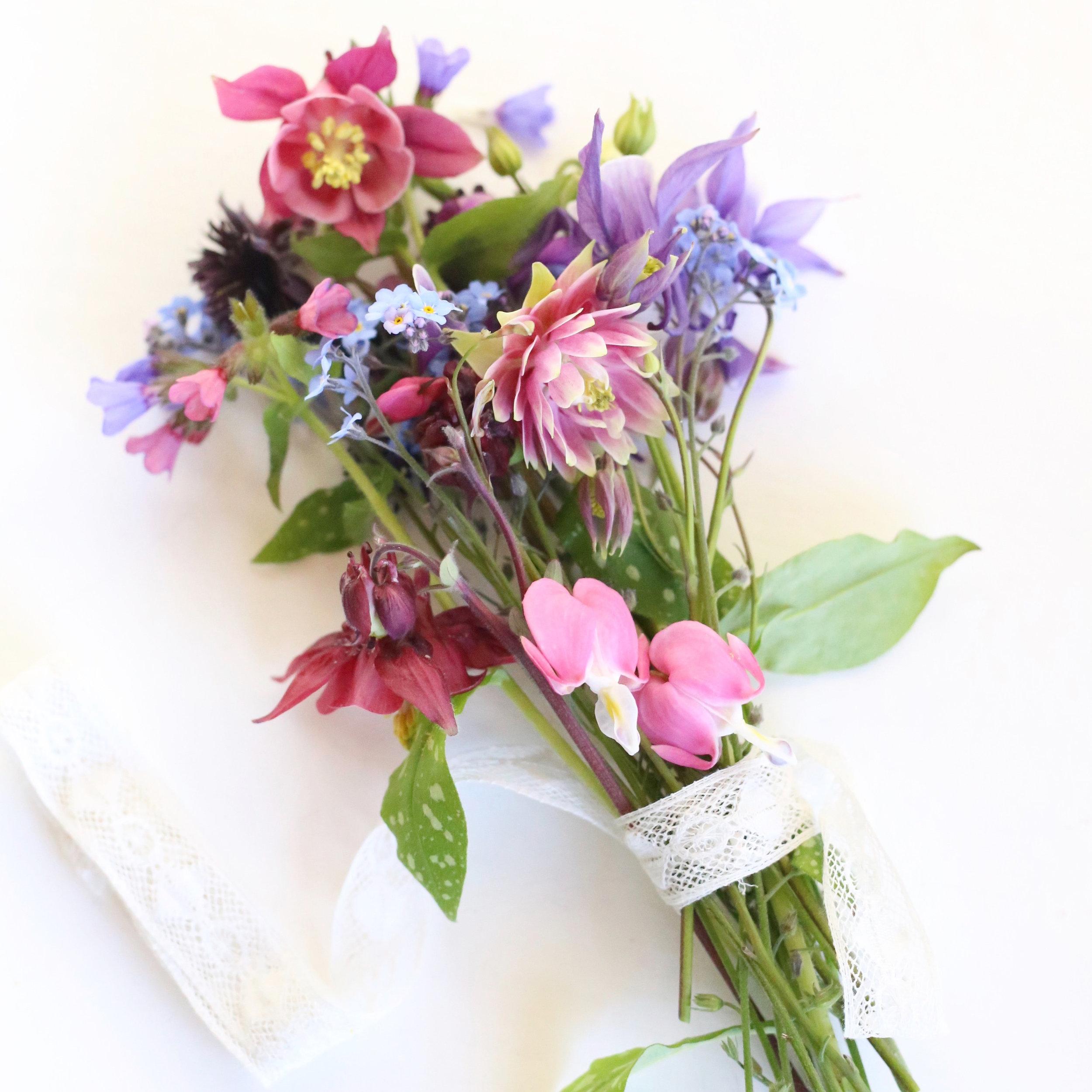 04Mar_Garden_Flowers.jpg