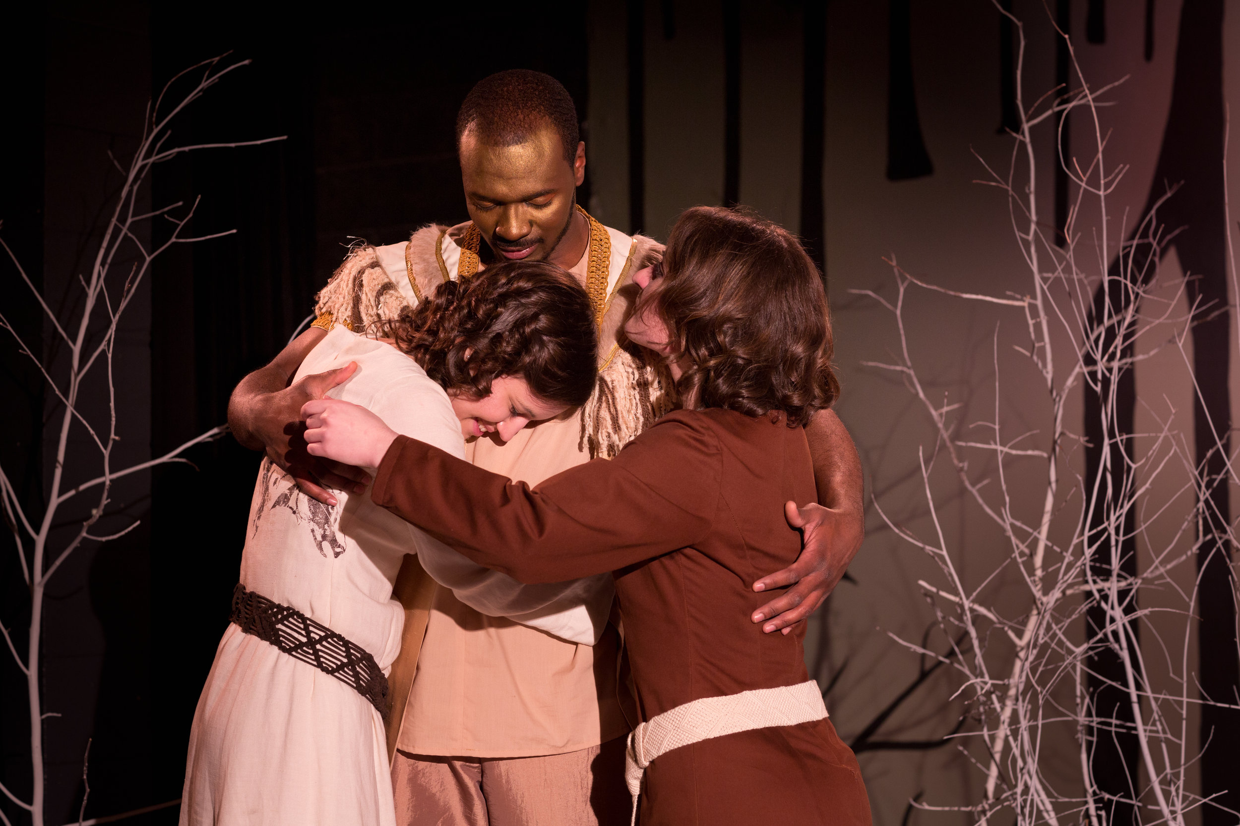 The Lion the Witch and the Wardrobe adapted by Joseph Robinette