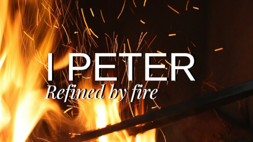 I Peter Wide (1).png