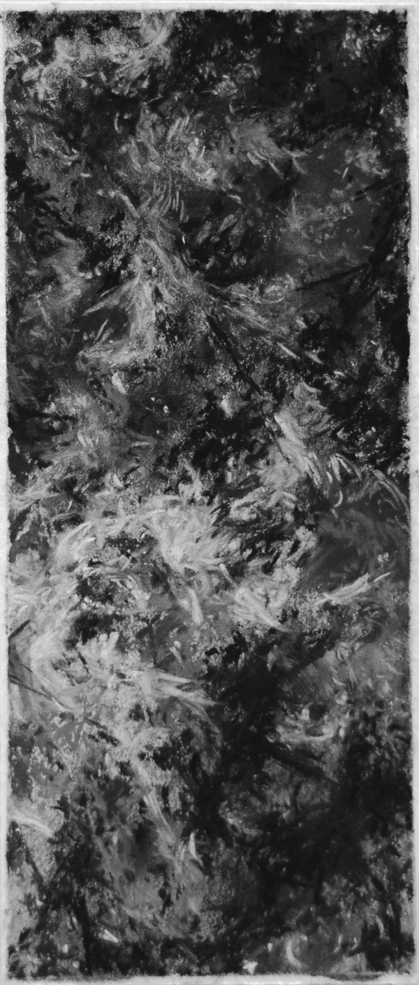 """'Two Tress #18"""", 2011, charcoal & pastel on paper, 10.75"""" x 5.25"""""""