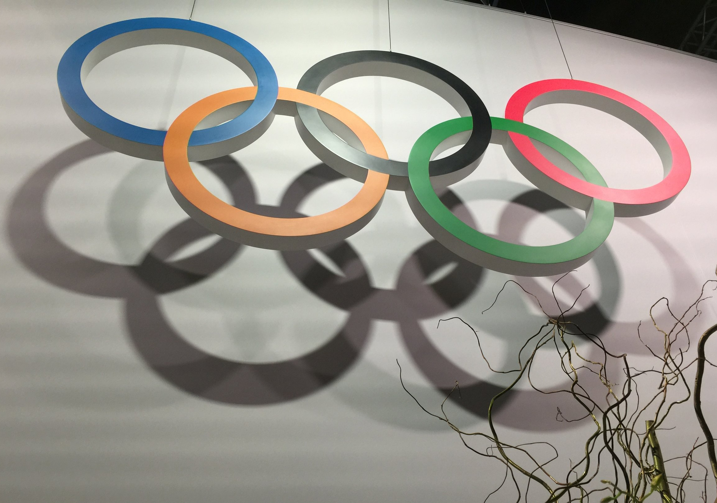 20 years translating & transcreating articles, documents, contracts, books & manuals for the Olympic Movement.