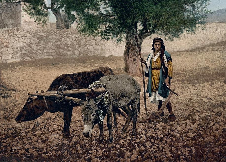 Thou shalt not plow with an ox and an ass together.-Deut. 22:10.