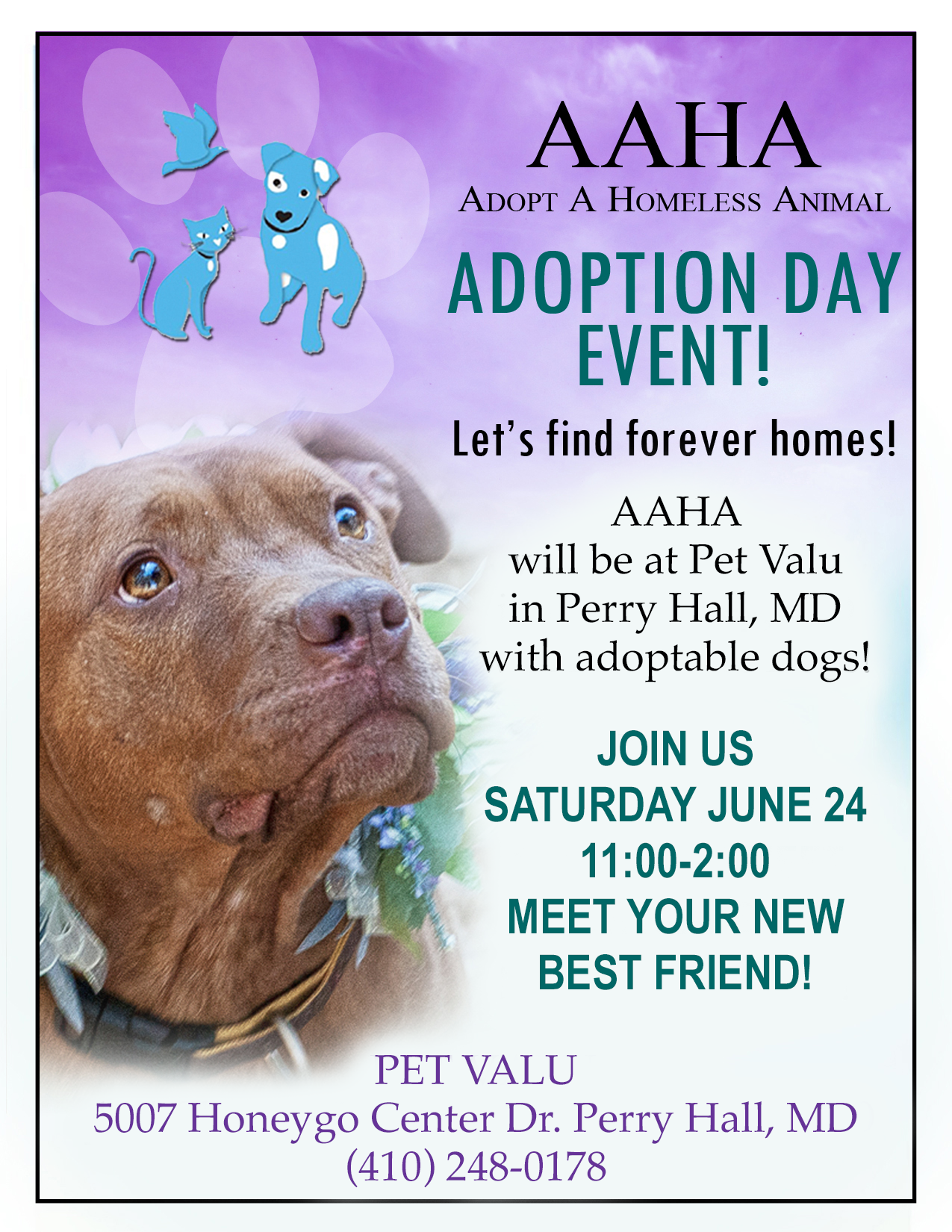 Pet Valu flyer