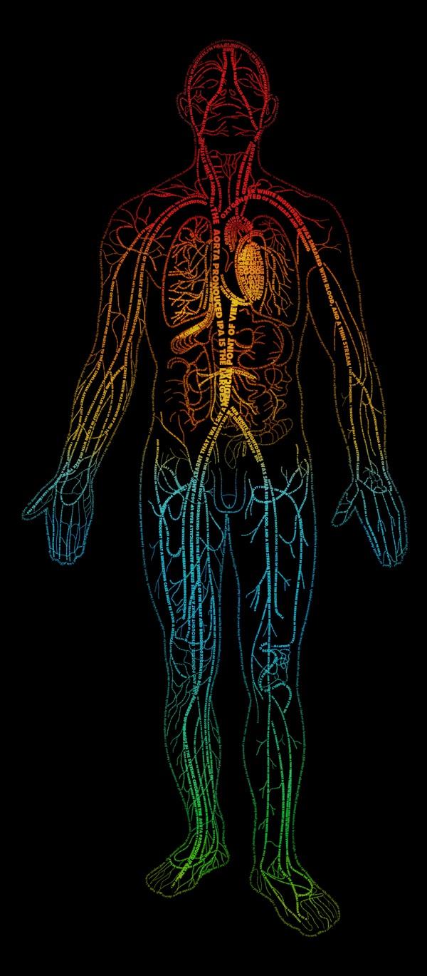 Alexey-Khitrov-Words-Anatomy.jpg