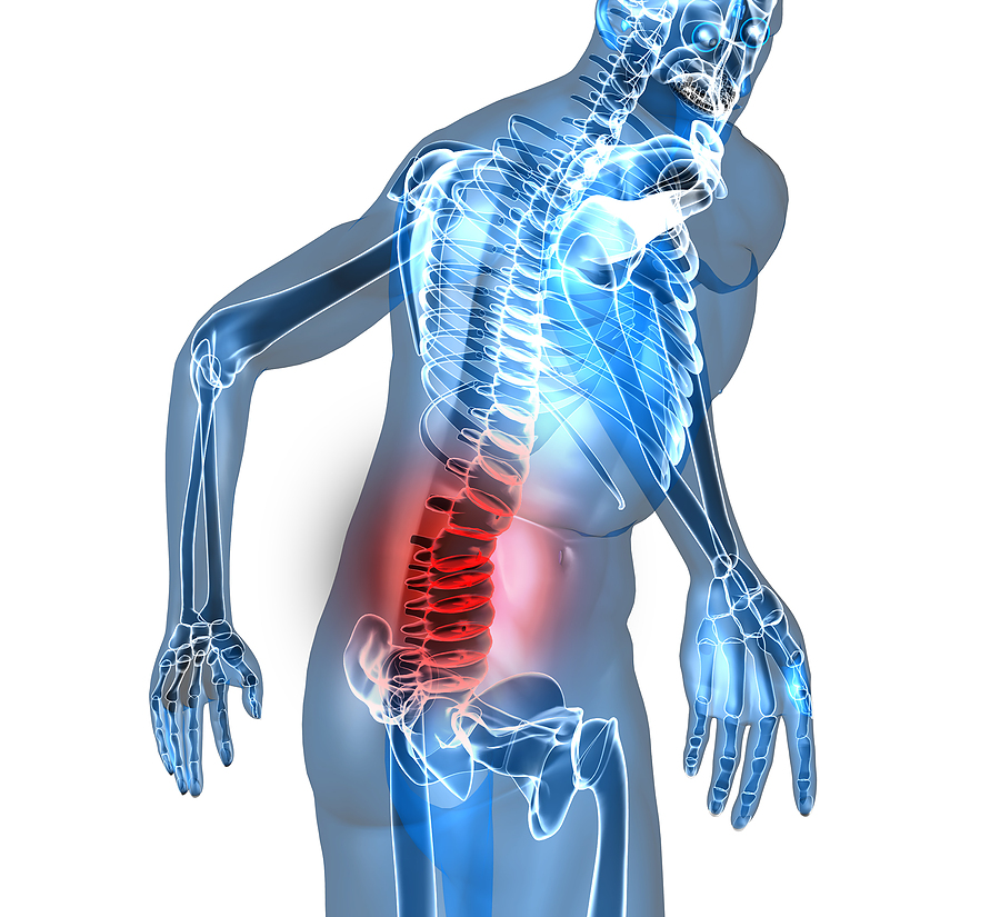This blog post discusses the best exercises to prevent low back pain from industry leaders in sports therapy