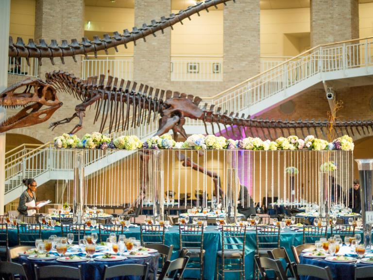 Dinosaur bones_Event decoration