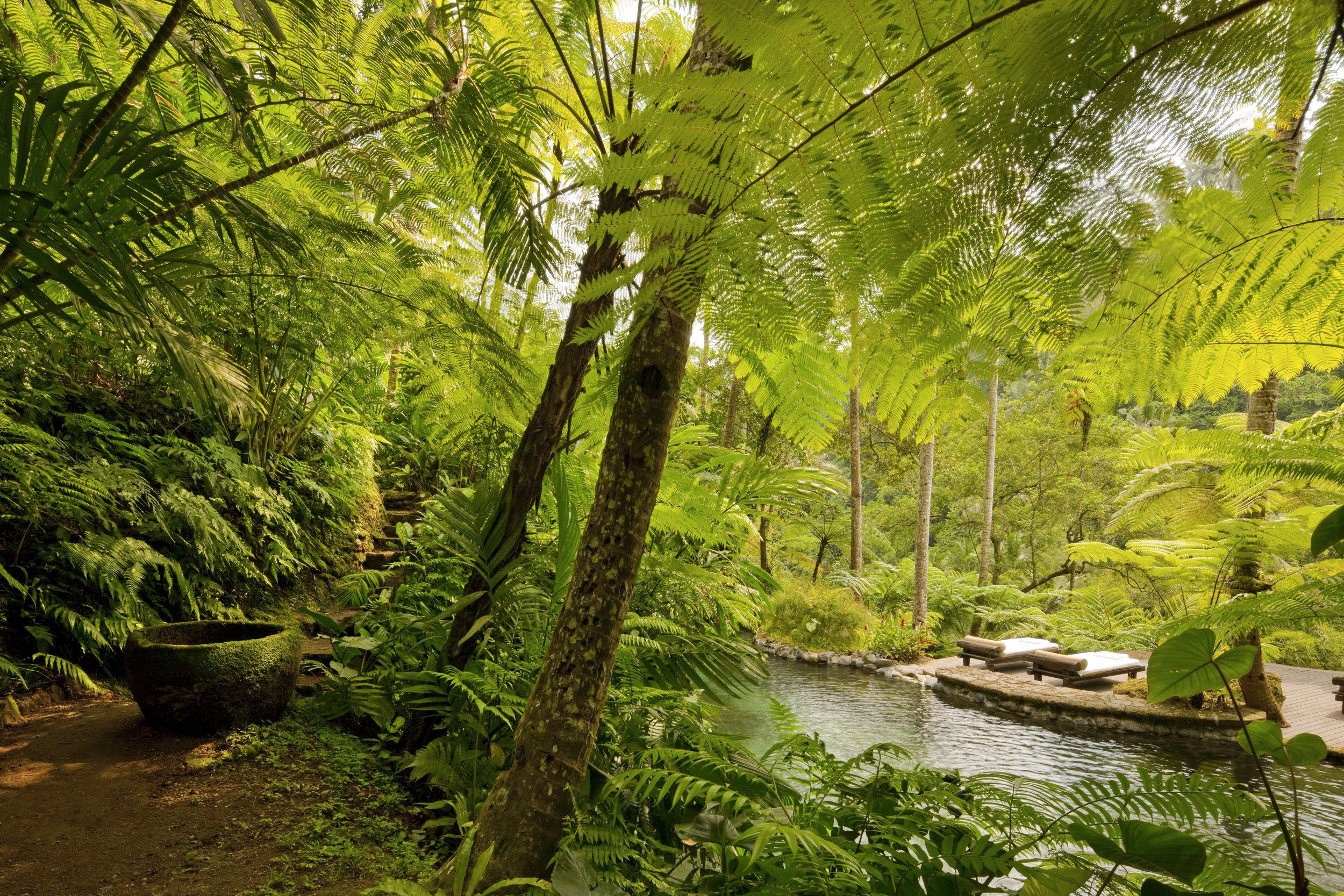 44164755-H1-Kedara_(Water_Garden)_1.jpg