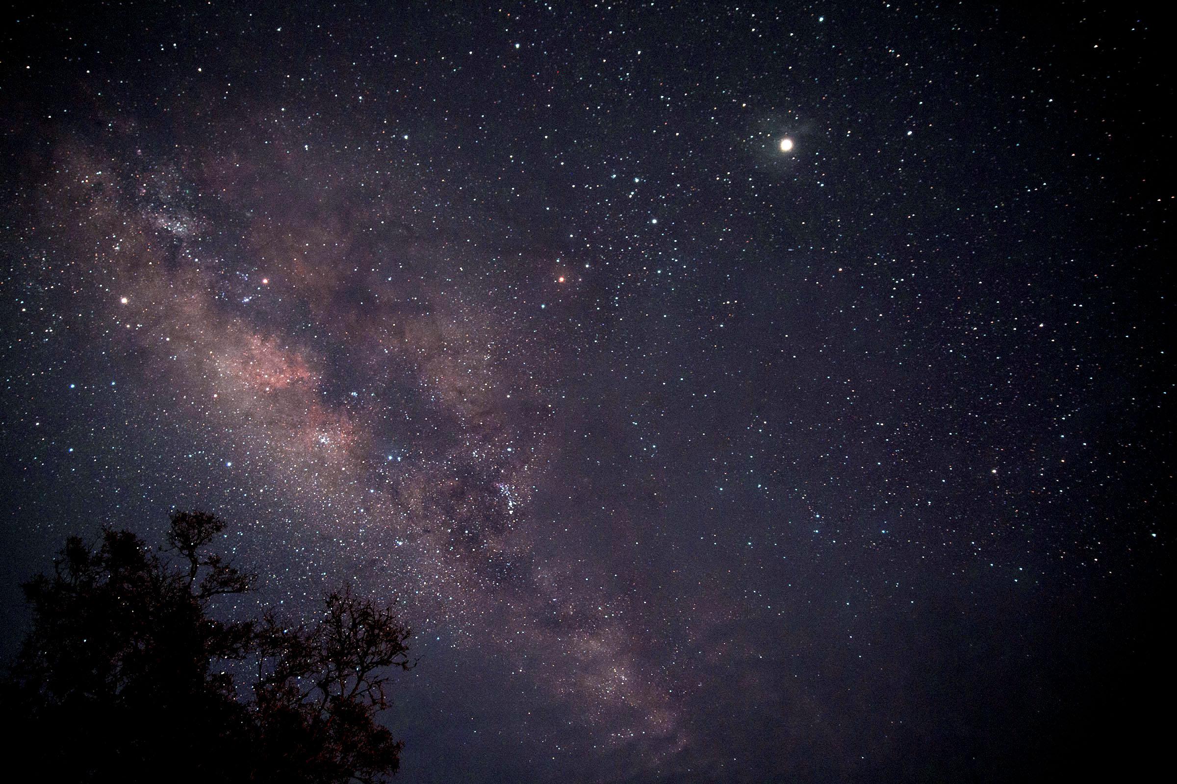 Uganda Stars.jpg