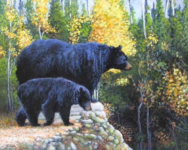 Black Bear and Cub |   Charles Wallis