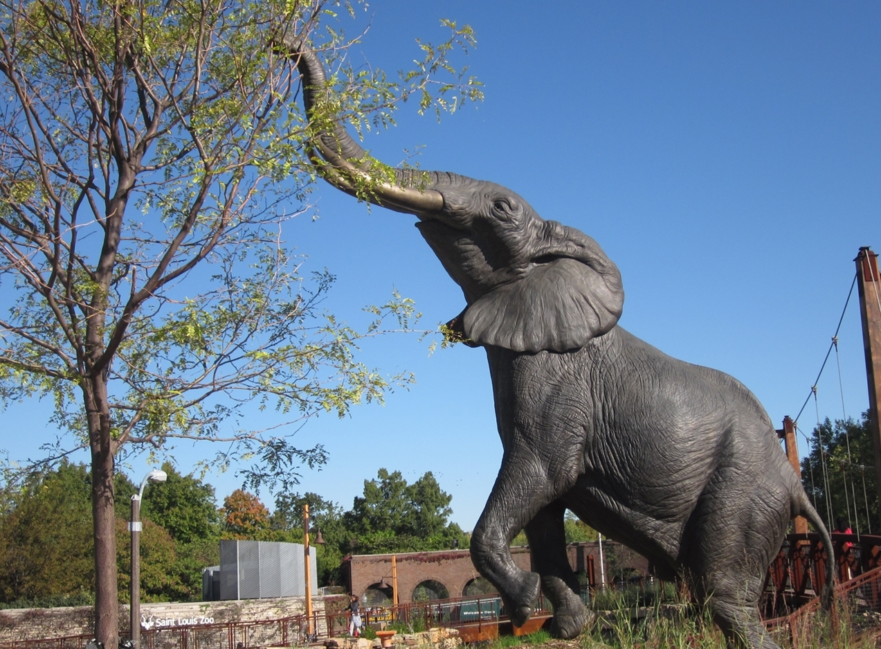 Past work #15 Reaching Elephant (1).jpg