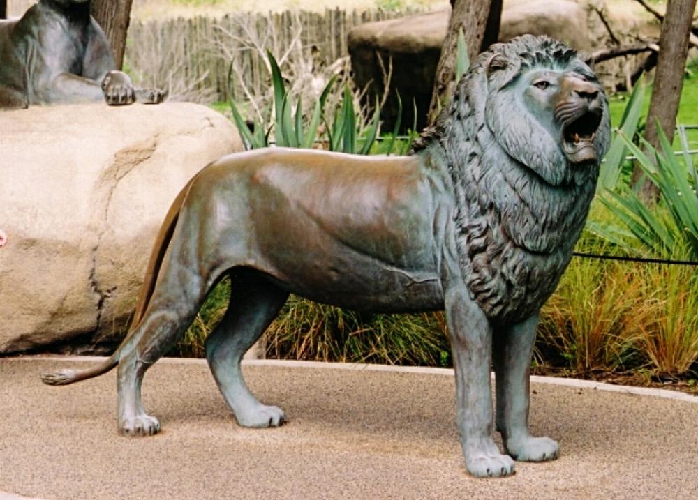 LionMale03.jpg