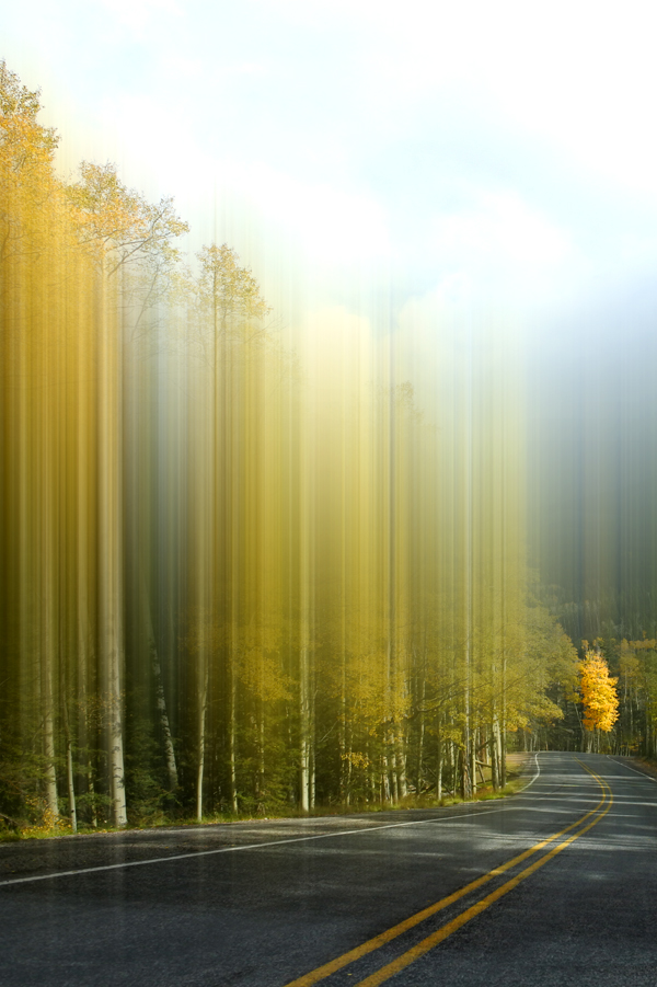 Road to Autumn.jpg