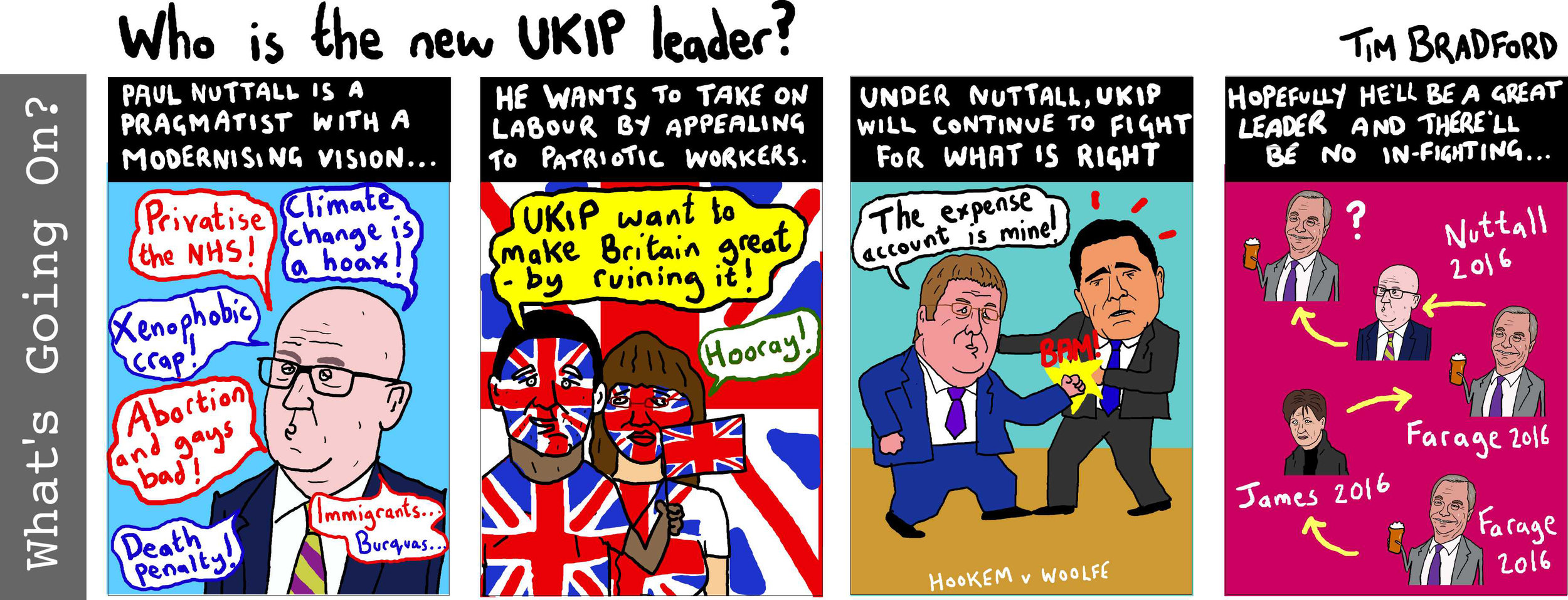 Who is the new UKIP leader? - 02/12/16