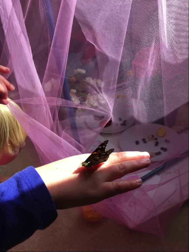 butterflies homeschool faith lessons