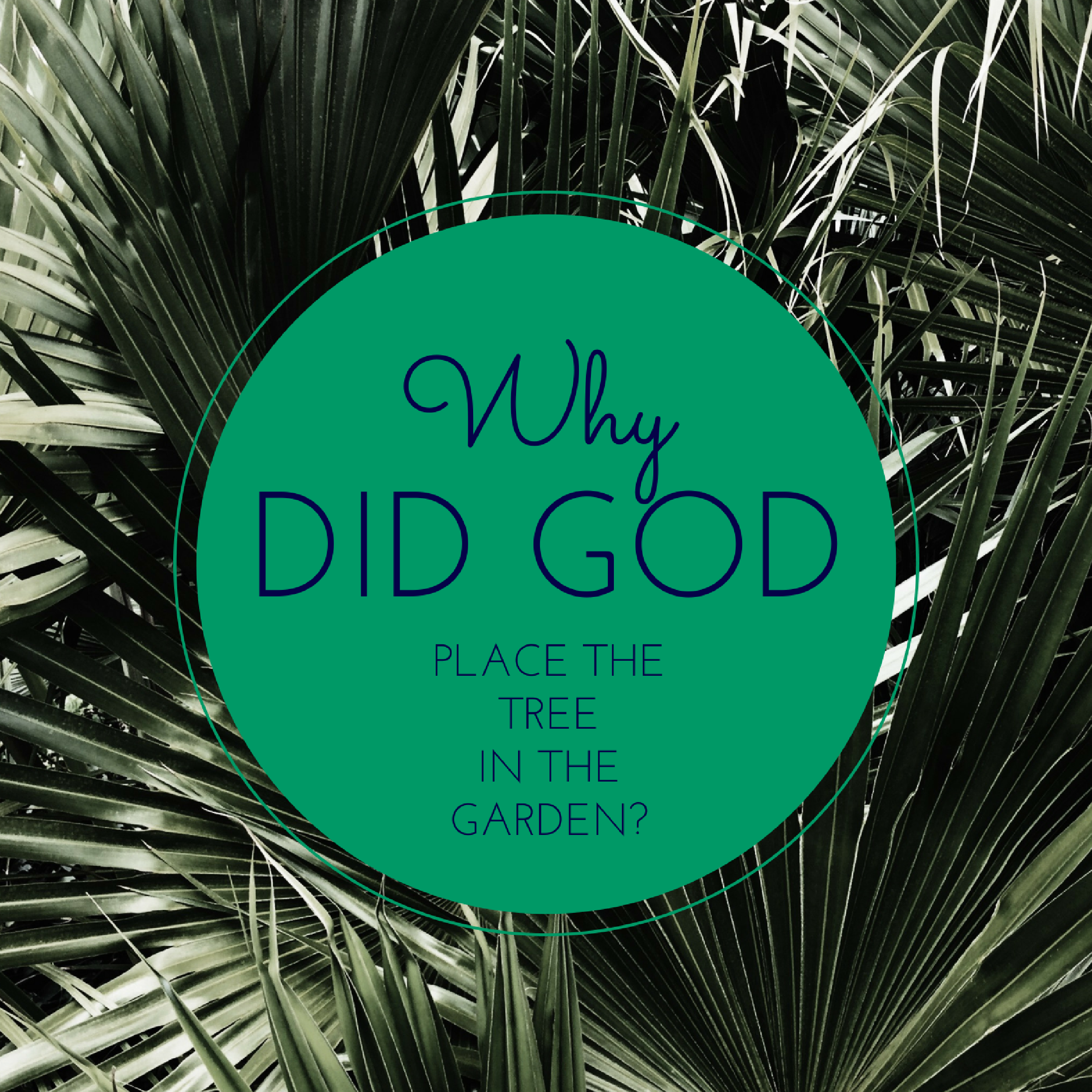 why_did_god_place_the_tree_in_the_garden.png