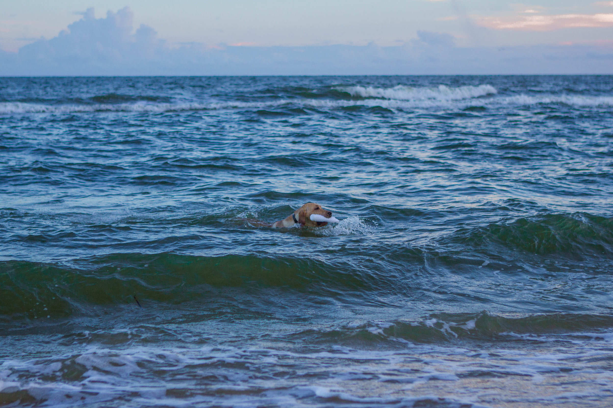 Remi Beach-7.jpg