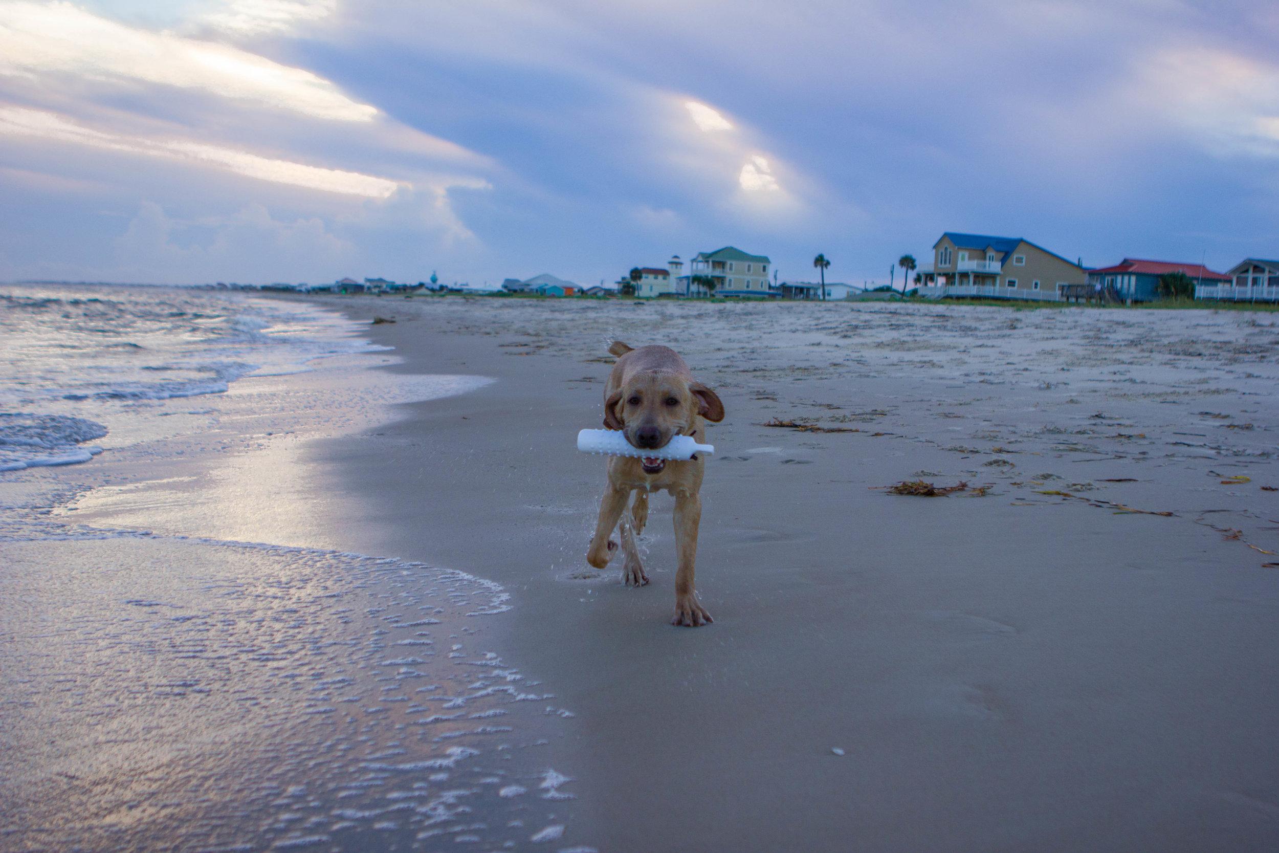 Remi Beach-9.jpg