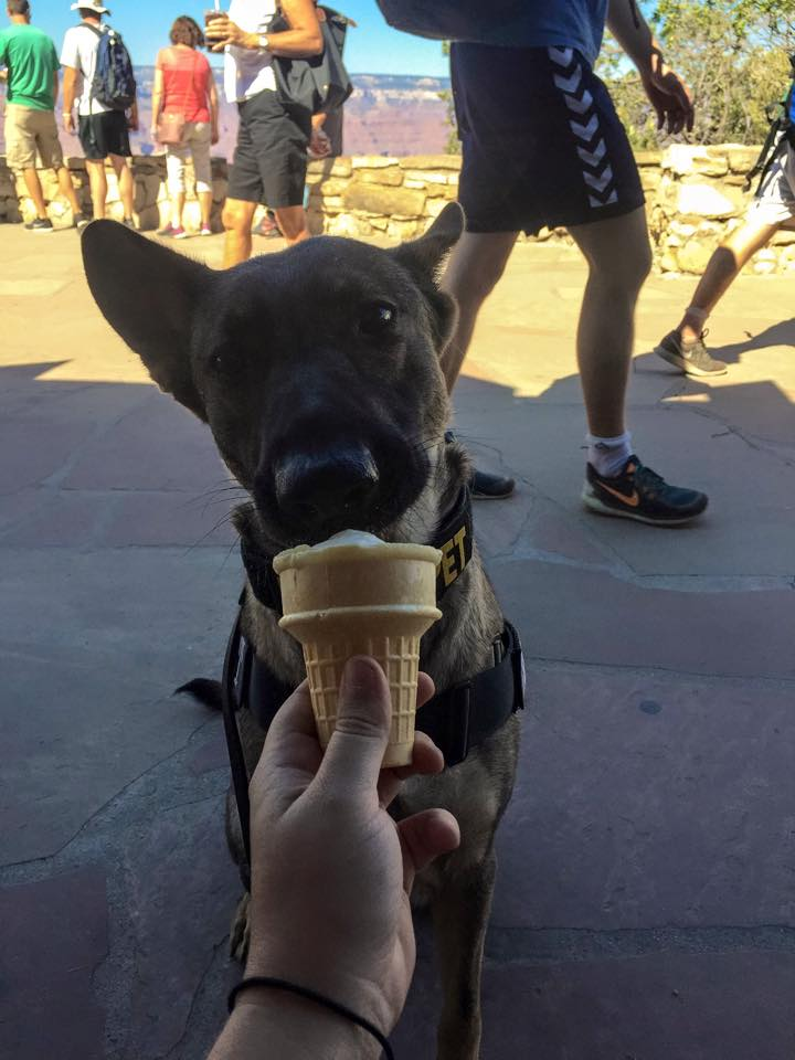 Karma eating ice cream at the Grand Canyon.