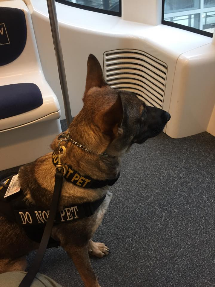 Karma with me on a plane train.