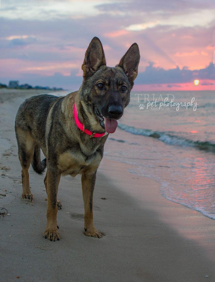 Karma on vacation with me in FL