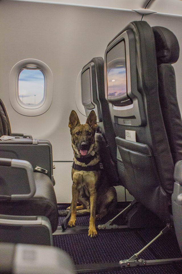 Karma in first class. SO MUCH ROOM.