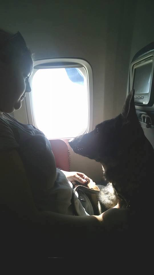 Karma accompanying me and my friends on our way to Merida Mexico.