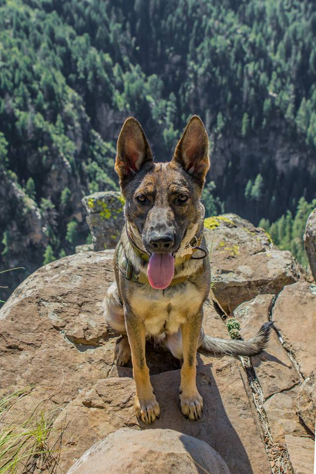 Karma somewhere in AZ