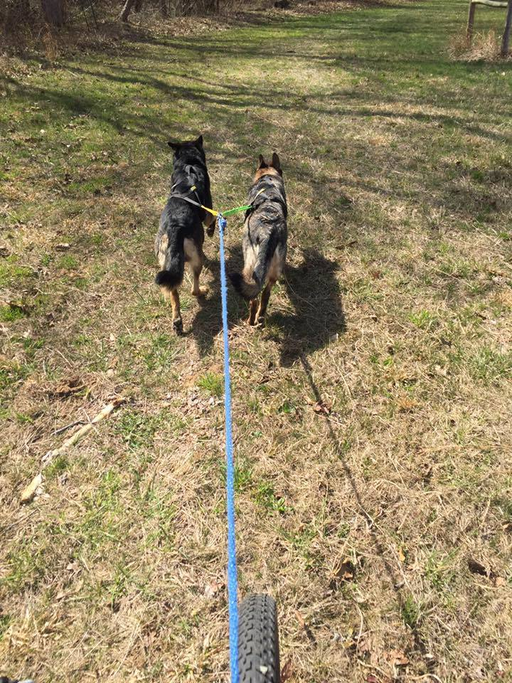 Karma teaching Jonas how to bikejor.