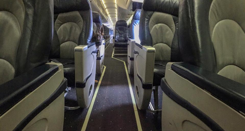 Karma and me waiting on the rest of the passengers.