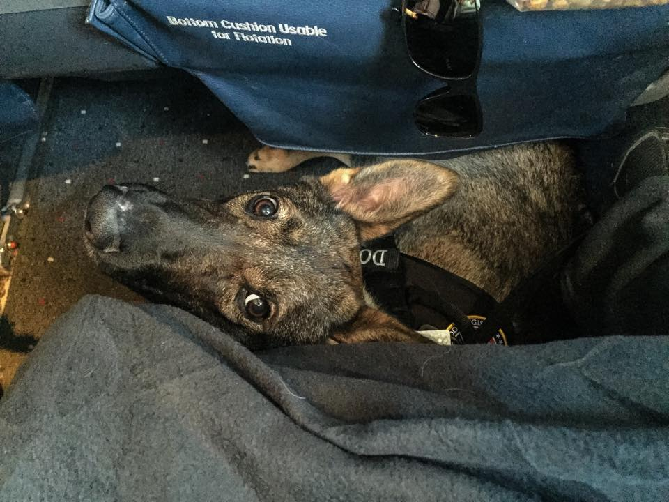 Karma in first class.