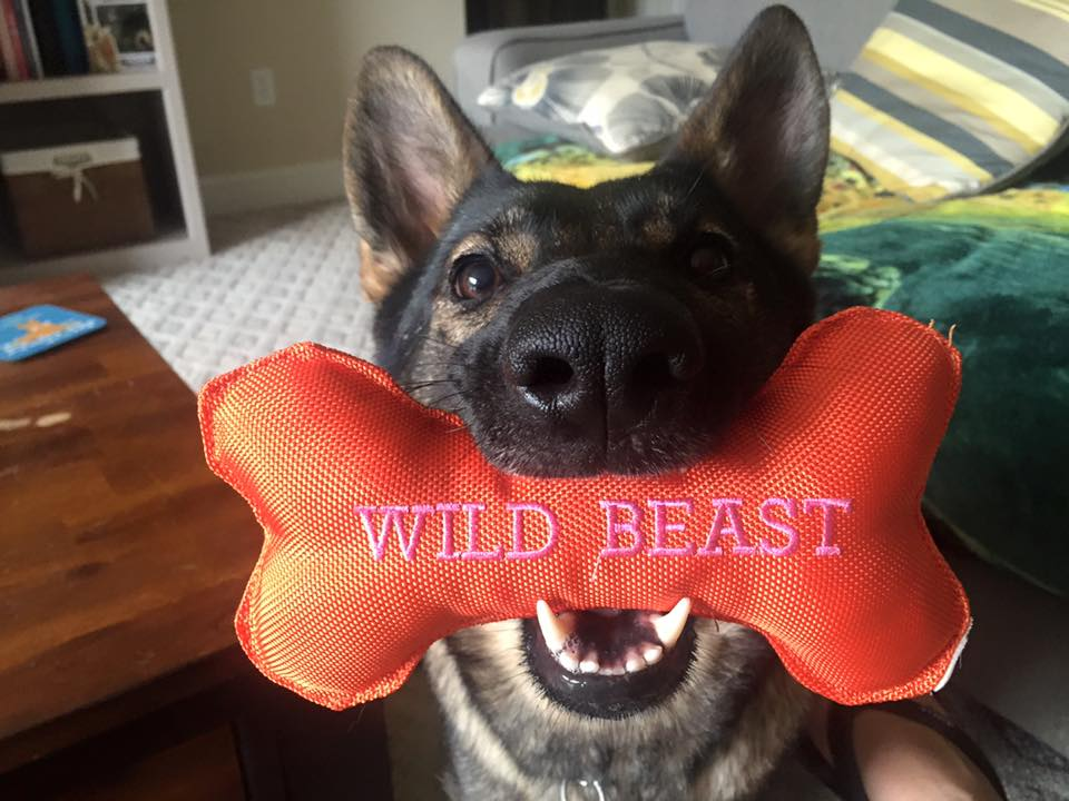 Hold for a picture.
