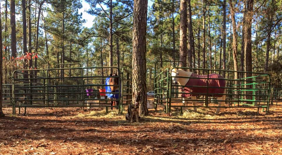 Karma camping with me and friends.