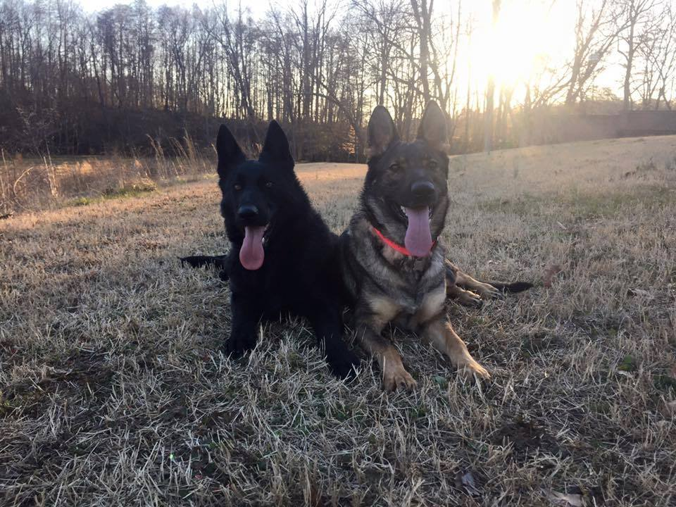 Karma and Fury