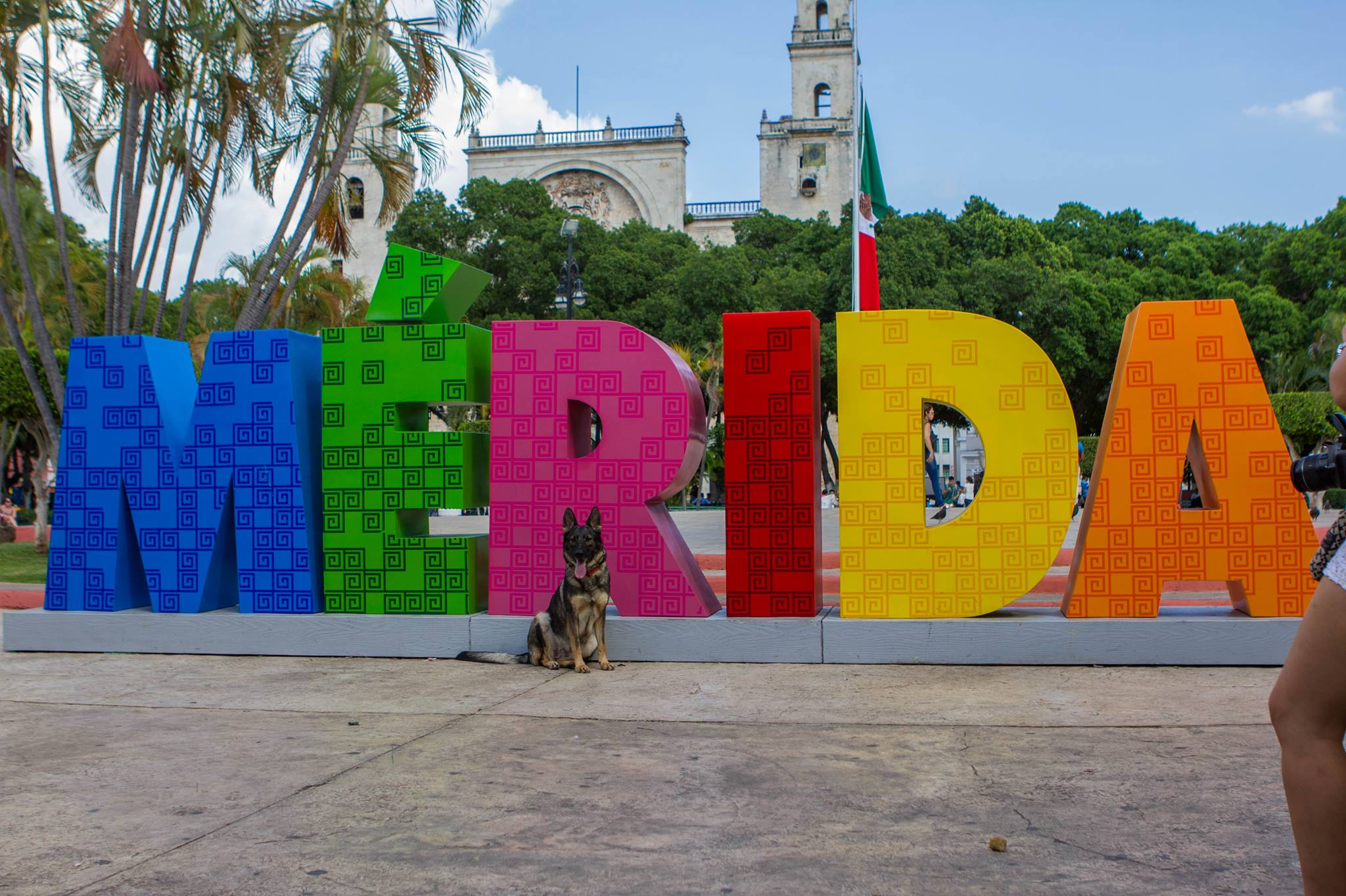 Karma in downtown Merida Mexico.