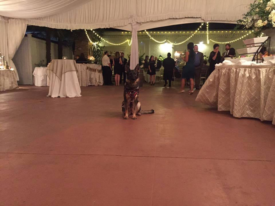 Karma working at a wedding reception.