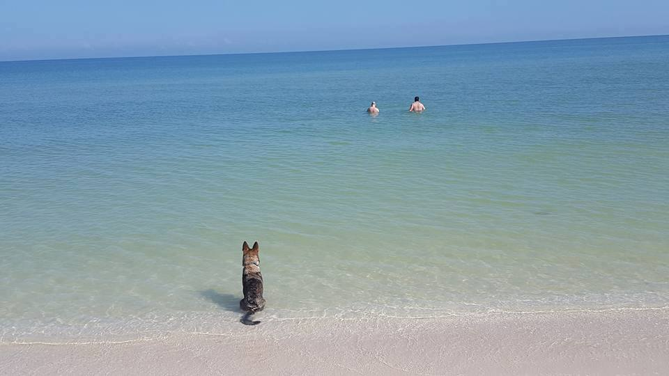 Karma watching the boys on vacation.