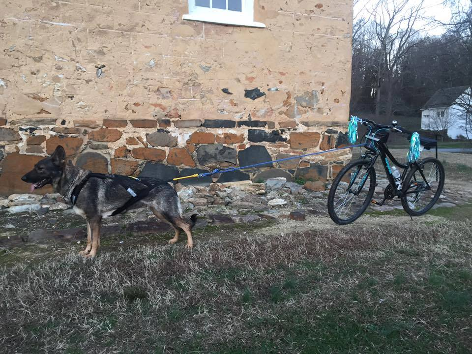 Waiting to go in Downtown Old Salem