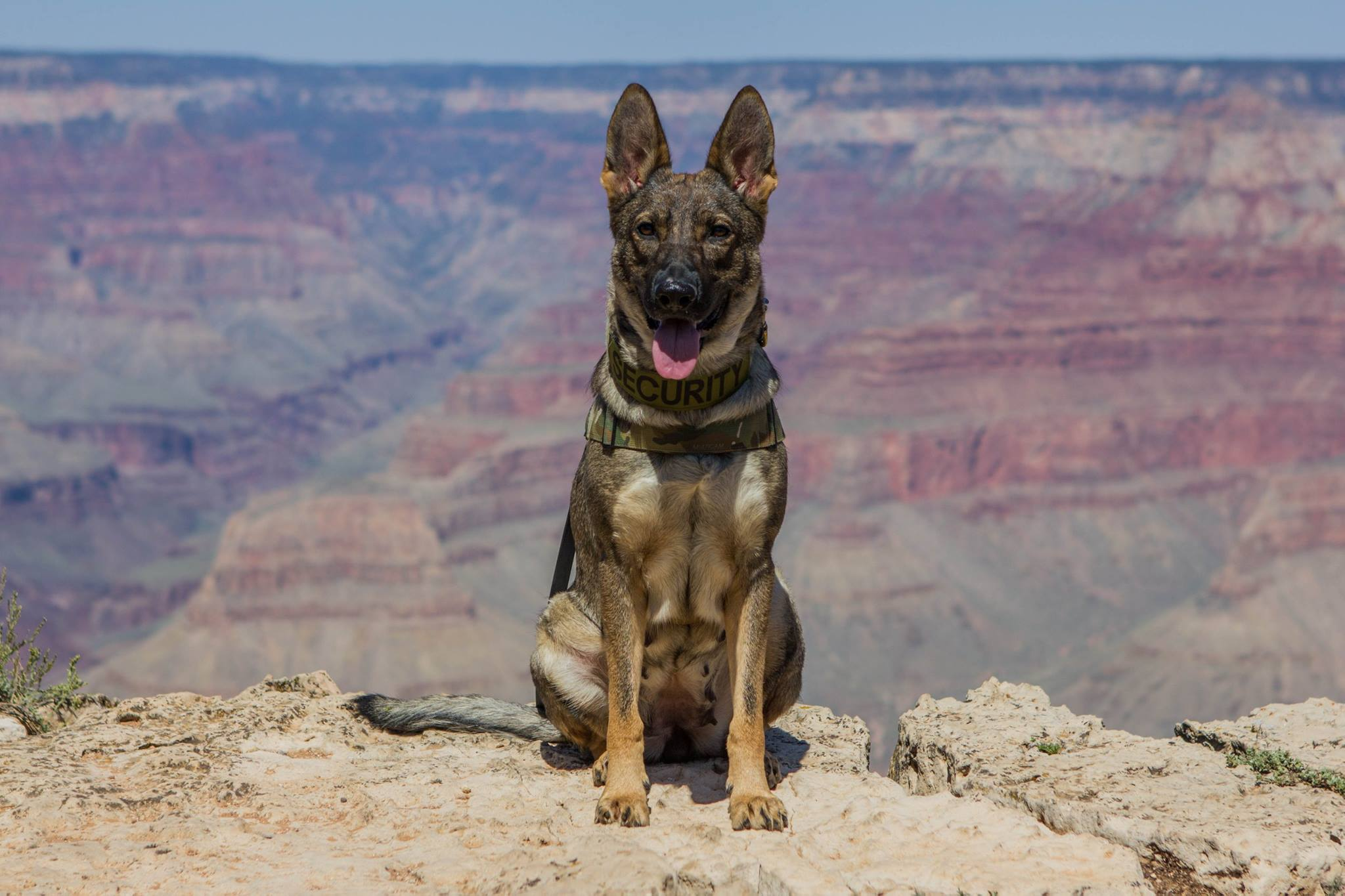 Karma at the Grand Canyon