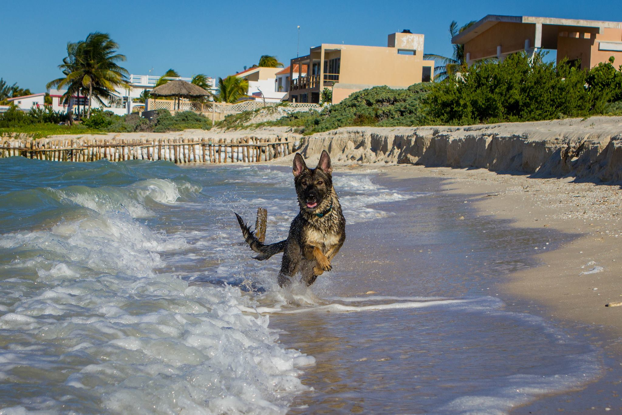 More beach vacation.