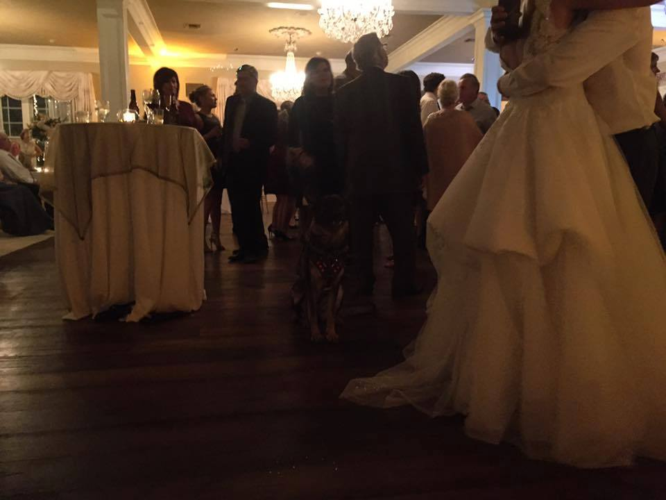 Family wedding reception.
