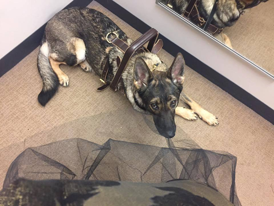 Karma gown shopping with me.