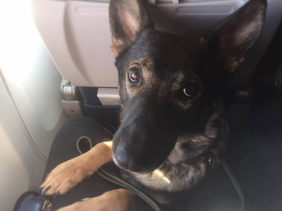 Karma coming up for air in coach