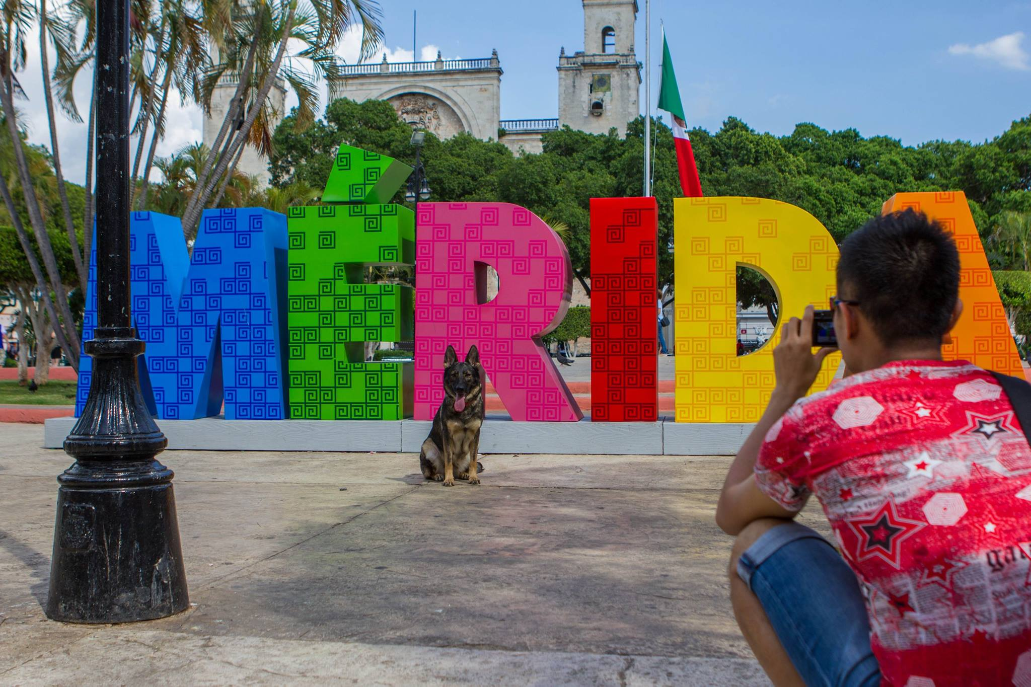 Karma posing for everyone.