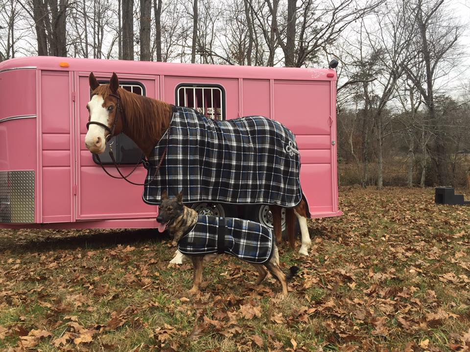 Karma with Sky. They had to have matching blankets.