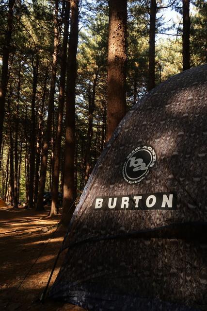 Burton_3.png