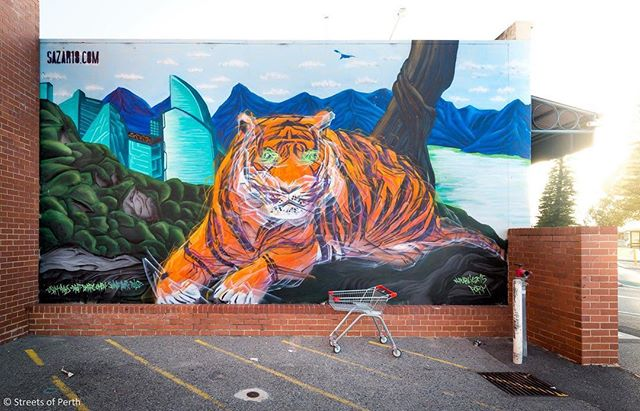 Go into the wild with this tiger mural by @sazar3db. 🐅 It was painted in April 2015 for @formwa's PUBLIC project and you'll find it on the corner of Elder Place and Queen St in Fremantle. 🐯#streetsofperth #tiger #sazar #fremantle #freo #perth #perthstreetart #streetart #mural #formwa
