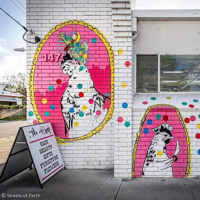 Painted by local artist @rebeccawetzlerillustration, these funky chickens can be found on the side of the @cornerstoreshop in Fremantle. 🐔#streetsofperth #rebeccawetzler #chicken #mural #streetart #fremantle #freo #fremantlestory #perth #perthstreetart #streetsoffremantle